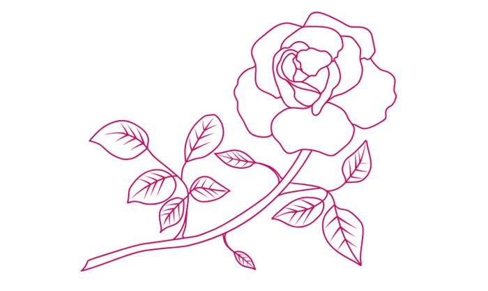 motyw róża